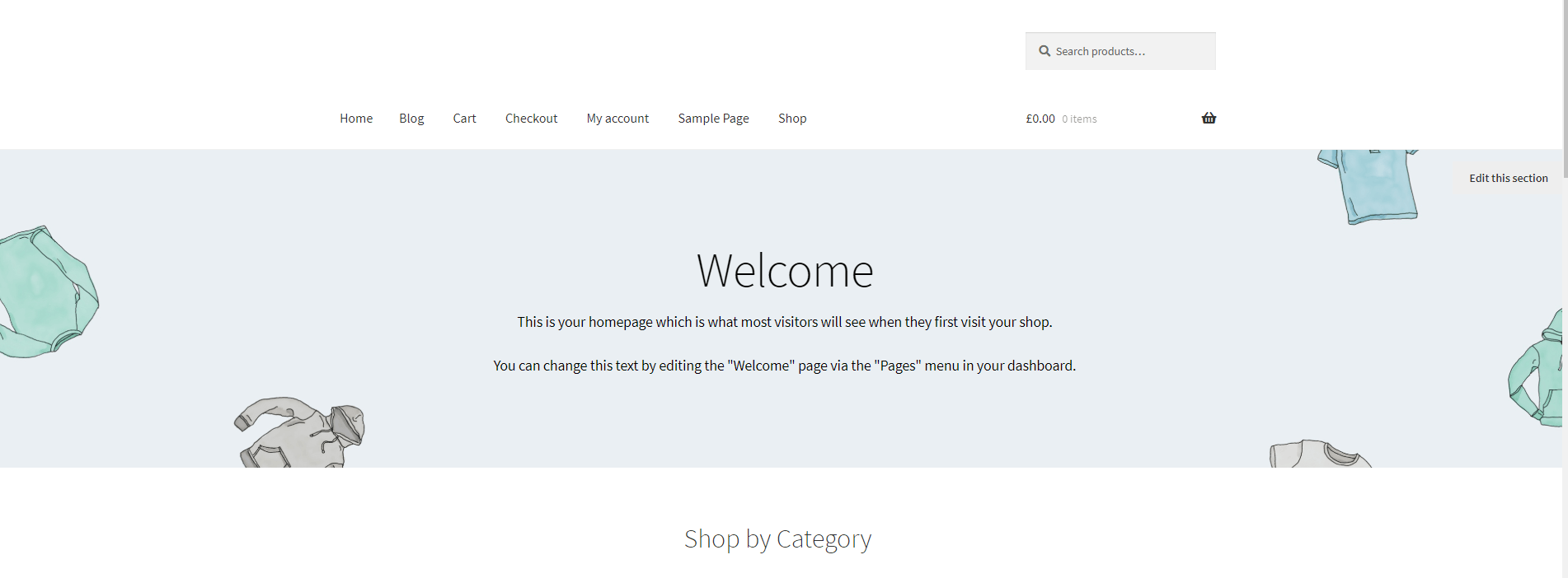 Basic Storefront Store Home Page
